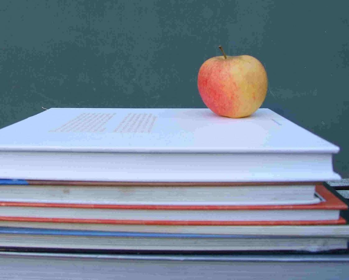Lernlust statt Lernfrust, Foto: S. Hofschlaeger / pixelio.de