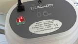 So sieht eine kleine Brutmaschine aus, die Temperatur soll ständig 38 Grad Celsius betragen