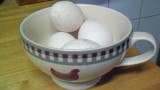 Vier Eier am Morgen, ein weiteres Ei im Laufe des nachmittags: Hybriden sind zum Eierlegen gezüchtet